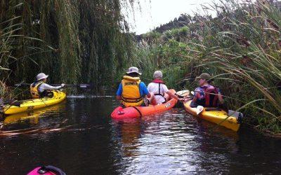 VIP Kayak Day a success